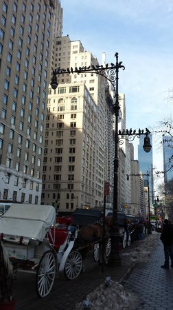 Park Lane Hotel: Directly across the street from Central Park