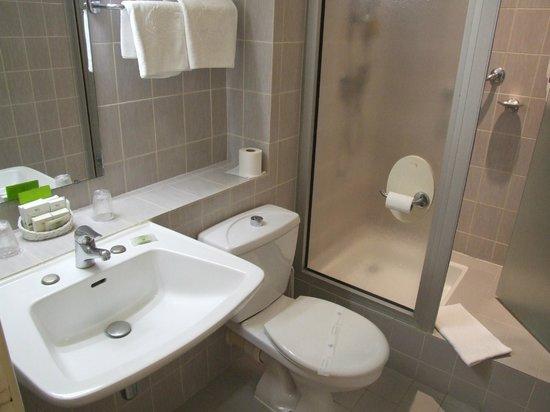 Le Lion d'Or: step up shower, note toilet paper