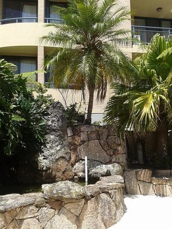 Adina Apartment Hotel Coogee: grounds