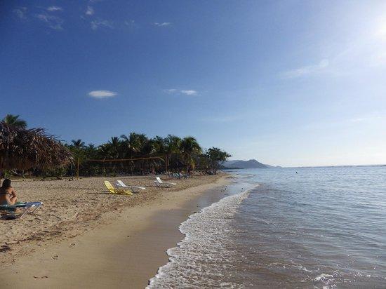 Club Amigo Carisol Los Corales : La plage