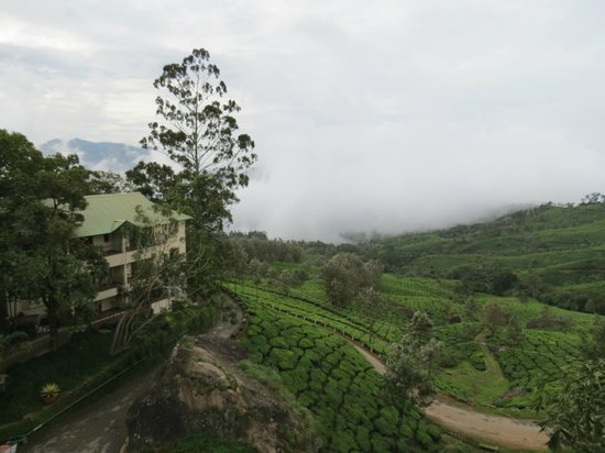 Club Mahindra Munnar : View from Room Balcony