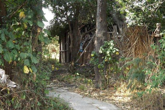 Kichakani Mara Camp: incuria della struttura