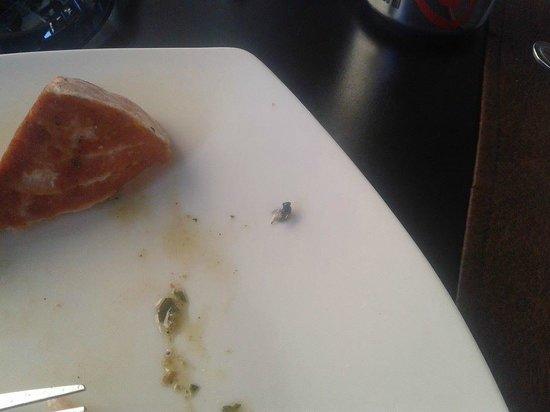 Aqui Jaime Restaurante: La Mosca!