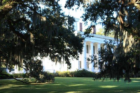 Greenwood Plantation: la plantation