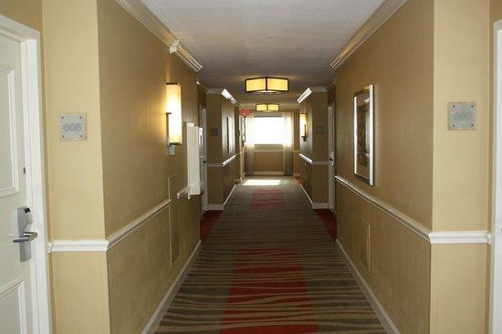 Hilton Clearwater Beach Resort & Spa: couloir