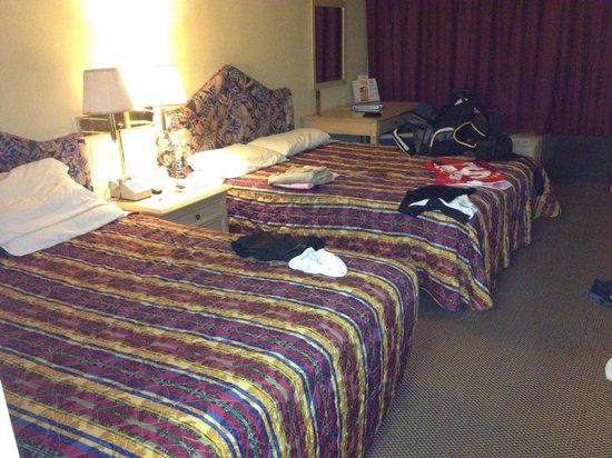 Orlando Continental Plaza Hotel: Single Room...