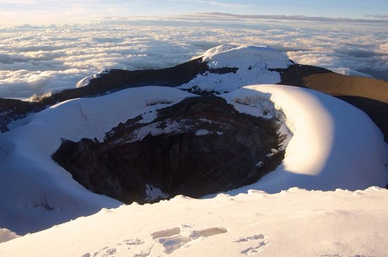 Gulliver Expeditions : Cotopaxi summit, 31st Jan 2014