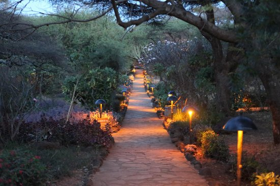Amboseli Sopa Lodge: a path to some rooms
