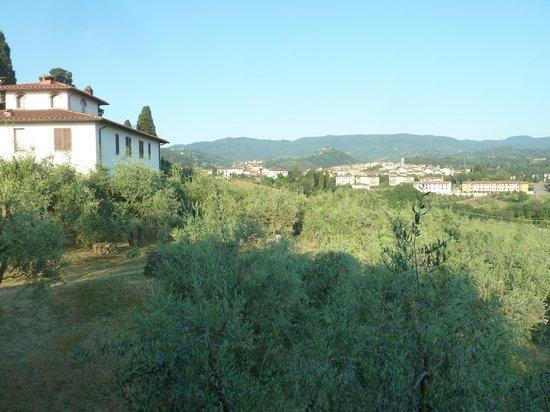 La Locanda Cuccuini di Cuccuini Stefano: Olives