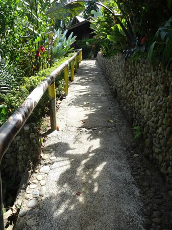 Aguila de Osa Inn: One of the inclines on the way to the room.