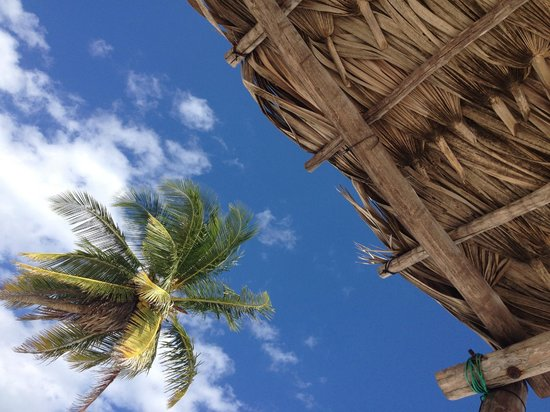 Be Tulum Hotel: A view UP from a day bed.