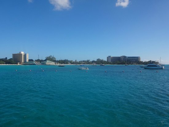 Hilton Barbados Resort: Hilton Barbados - from the marine park.
