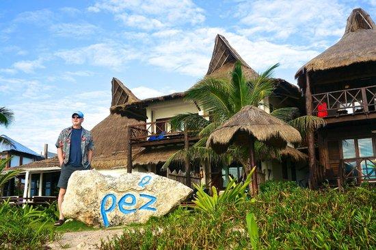 El Pez: Rooms facing the water.
