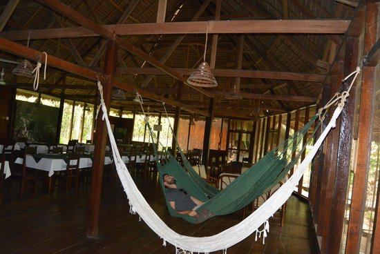 Sandoval Lake Lodge: Hammocks!