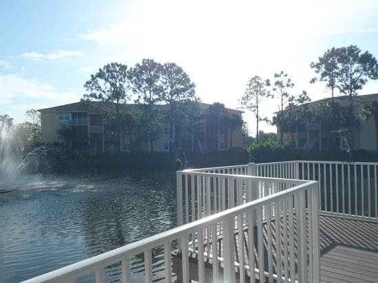 Sheraton Vistana Resort Villas- Lake Buena Vista : view from opposite side of small lagoon.