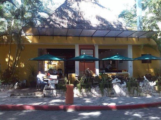Hotel Chablis Palenque: Hotel + ristorante all' aperto