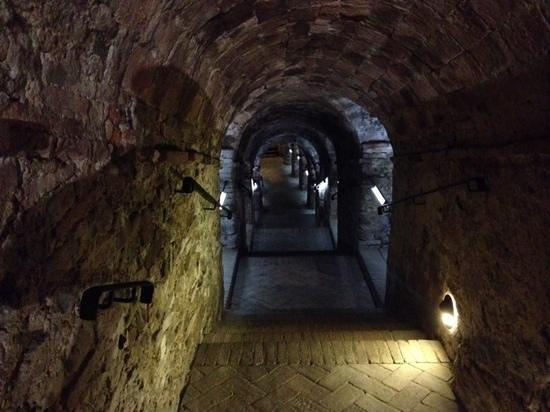 La Sangiovesa: la grotta