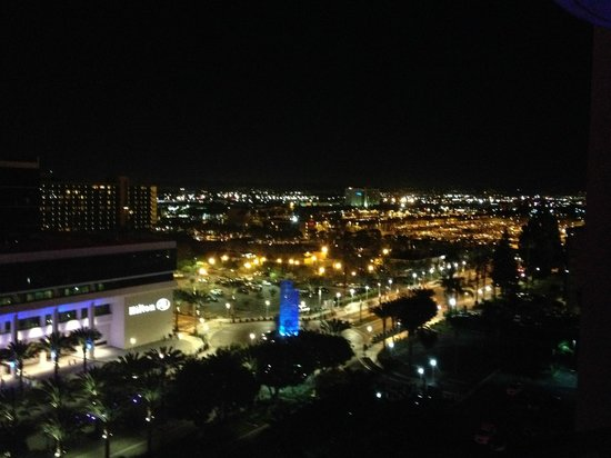 Anaheim Marriott: view at night
