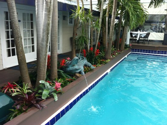 La Te Da Hotel : pool Jan 2014