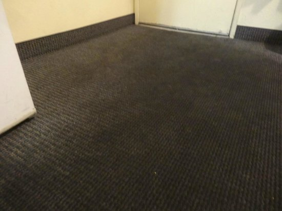 Americas Best Value Astoria Inn and Suites : Filthy carpet.