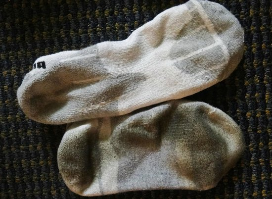 Americas Best Value Astoria Inn and Suites : Bottom sock is filthy after walking on carpet for 20 minutes.