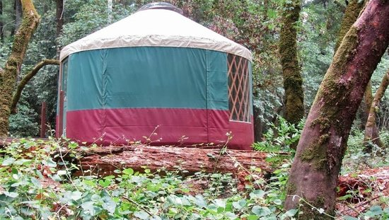Yurt camping picture of bothe napa state park for Bothe napa cabine