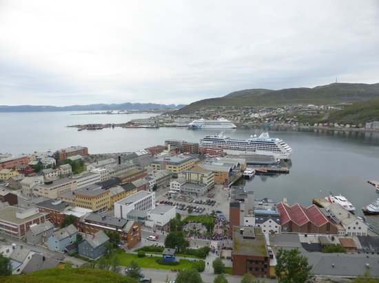 The Polar Bear Society: The View From the Top of Hammerfest