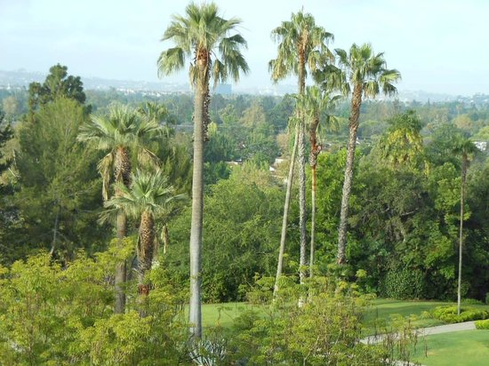 The Langham Huntington, Pasadena, Los Angeles: View from room