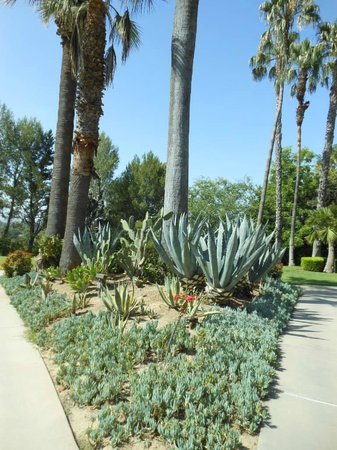 The Langham Huntington, Pasadena, Los Angeles: Hotel grounds