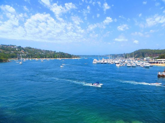 The Spit Bridge to Manly Walk : Manly to Spit road