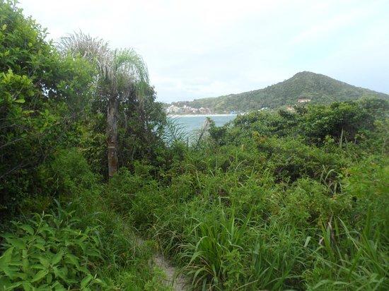 Praia De Quatro Ilhas: Vista da praia Cuatro Ilhas!