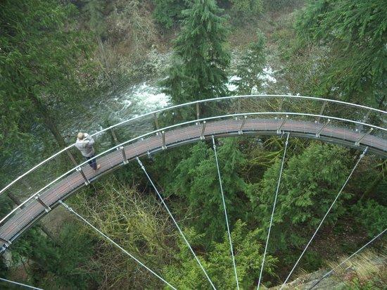 Capilano Suspension Bridge Park: Capilano Suspension