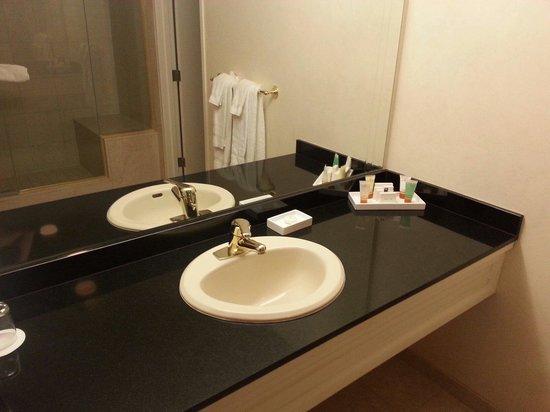 Monte Carlo Resort & Casino : Bathroom in the spa suite