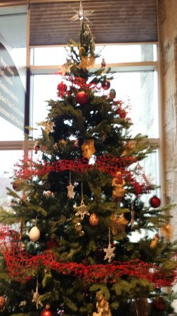 Meijer Christmas Eve Hours.Slovakia Christmas Tree At Meijer Gardens Picture Of