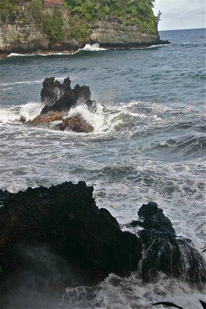 Hawaii Tropical Botanical Garden: Sea shore