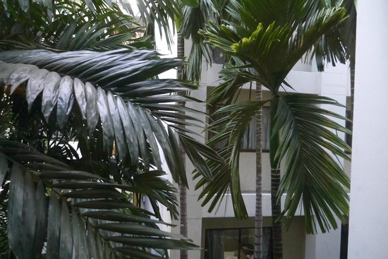 Rambuttri Village Inn & Plaza: Vista desde la habitación