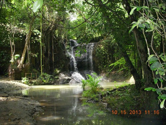 The Main Waterfalls Picture Of Latille Waterfalls And Gardens Micoud Tripadvisor
