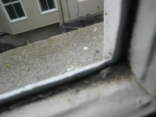 Bay Waverley Castle Hotel: Filth and grime around the window to complete the fantastic view.