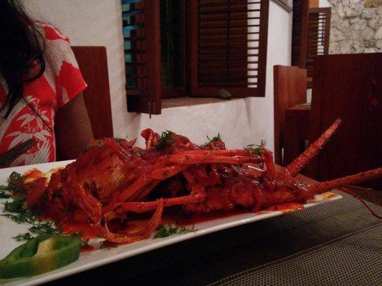 Ganesha Restaurante: Singi Irral - Langosta - Lobster