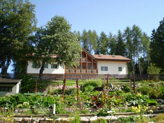 Giardino Botanico Alpino Viote di Monte Bondone