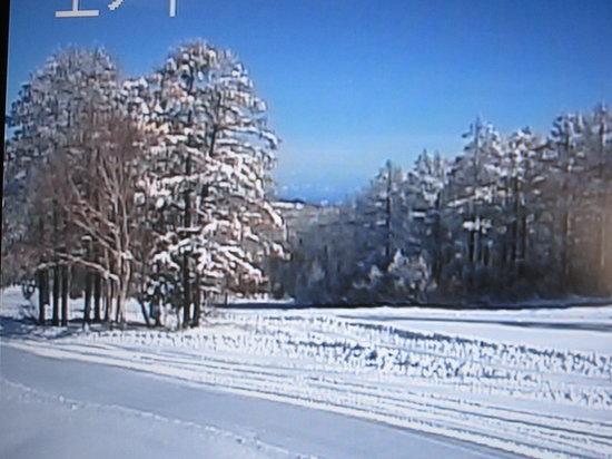 Minshuku Genroku : スキー場の風景