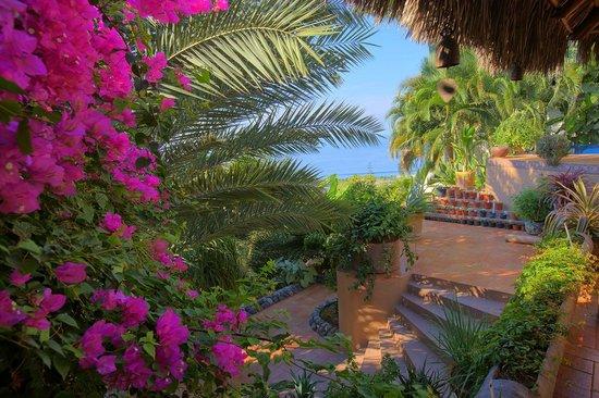 Ola Brisa Gardens
