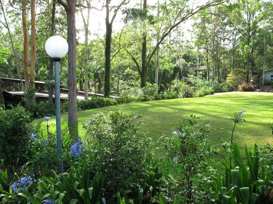 Cedar Creek Lodges: Surrounding grounds