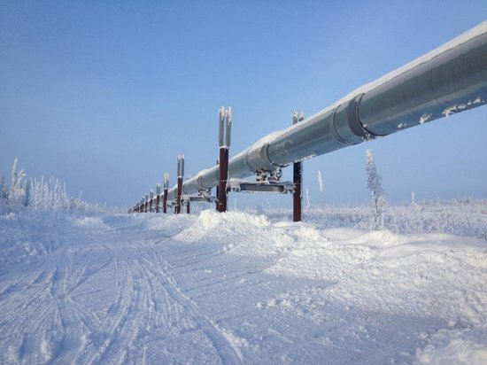 Northern Alaska Tour Company: Alaska Pipeline