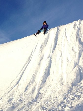 Northern Alaska Tour Company: snow Sliding