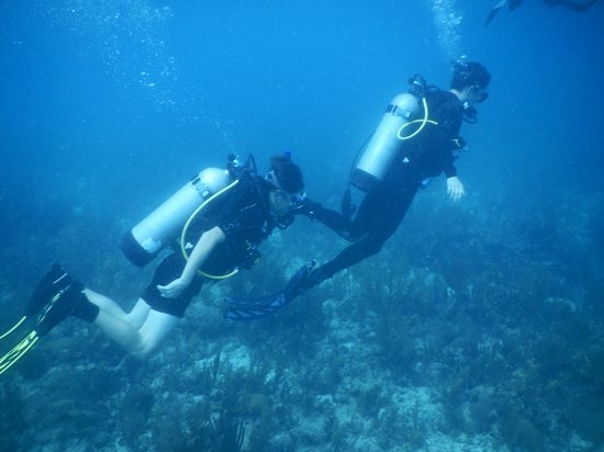 Hamanasi Adventure and Dive Resort: Hamanasi Family Dive Adventure