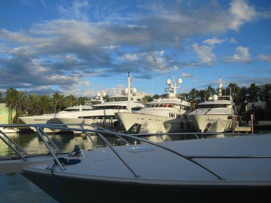 Atlantis - Harborside Resort: Marina full of fabulous yachts right next to Harborside