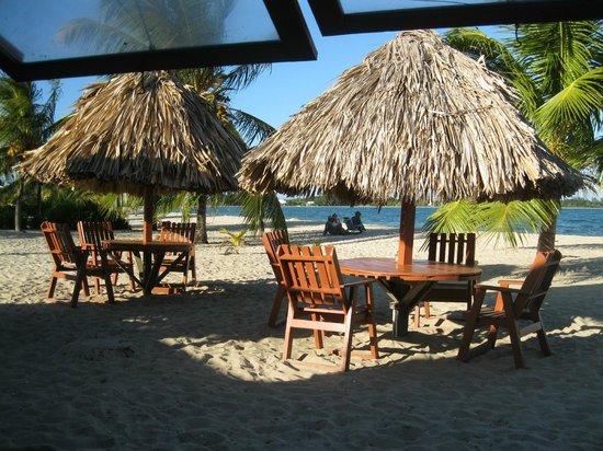 Seaspray Hotel: View of beach from De Tatch