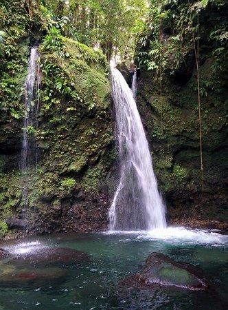 Reyno Day Tours: Jacko Falls