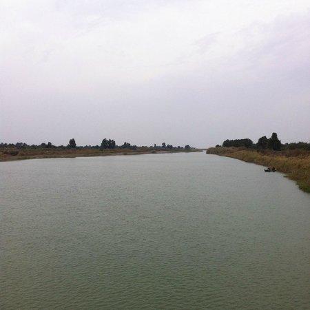 Dhi Qar Province, Irak: Euphrates in Dhi Qar 2013